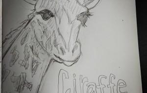 初描きキリンさん - ジル
