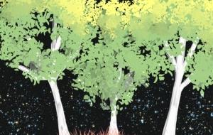 月の木 - ゆず