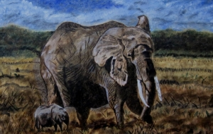 象の親子 - 萩原克典