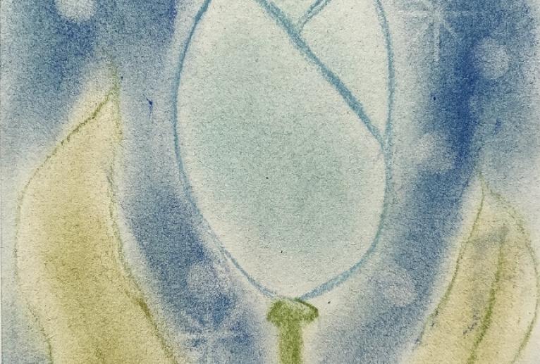 青いチューリップ - ナカリ