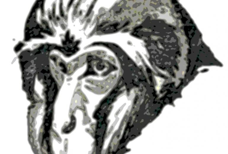 老猿モノクロ