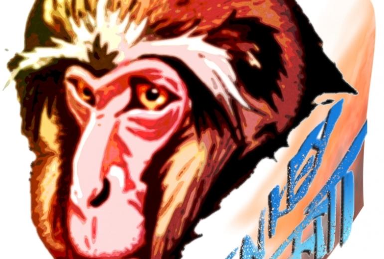 老猿カラーMonkey graffiti