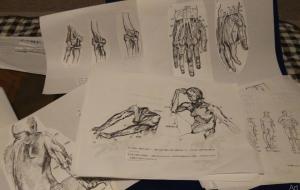 習作 (人体解剖 の本一冊まるごと)一部公開 - ポポリ