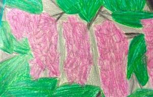 藤の花 - 水樹