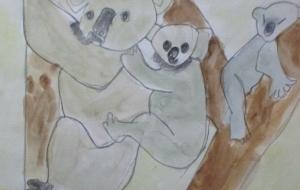 親子のコアラ - マサミ