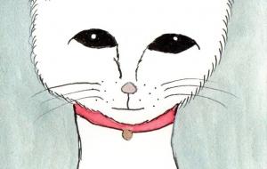 白いネコ - 小林葉子