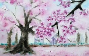 桜 - Yuki
