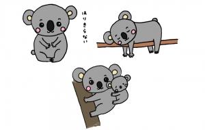 ゆとりコアラ - haruzou
