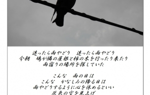 雨やどり - 昌(まあさ)