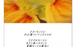 高性能な心 - 昌(まあさ)