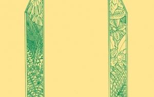 草の枠 - 高森 圭