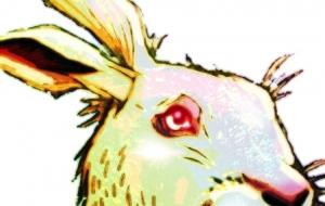 Rabbit - 道人
