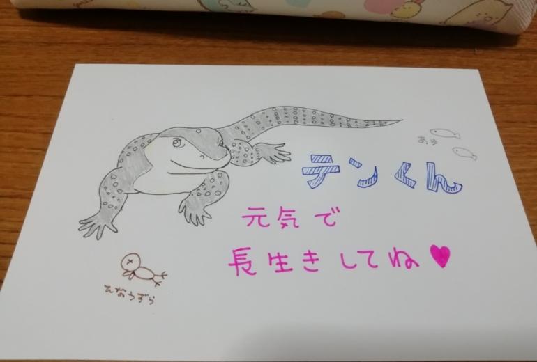 Koma☆chi