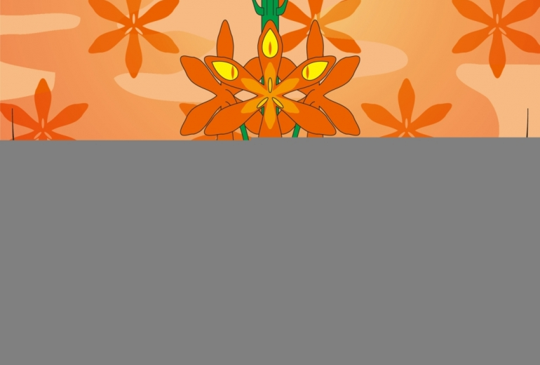 芳香カリスマのモントブレチア