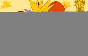 万能クールな極楽鳥花 - ブルーム