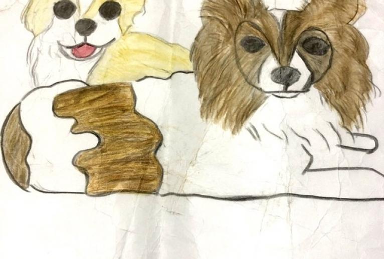 我が家の愛犬 - じゅんこ