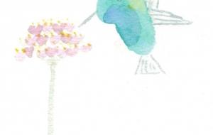 ハチドリのランチ。 - あんず