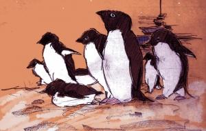 ペンギンは上を向く - ナノ