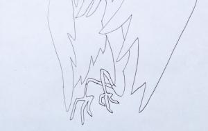 極楽鳥 - 李池 牡丹