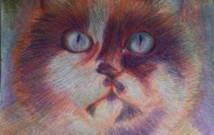 紫のオーラの猫 - ごり田ごり美