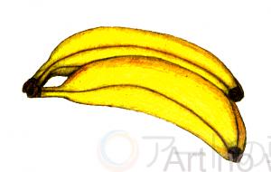 バナナ描いてみました。 - 加藤伝