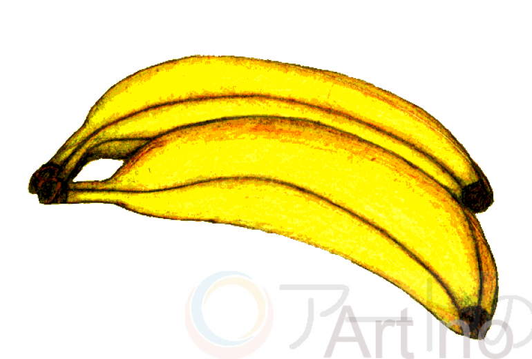 バナナ描いてみました。