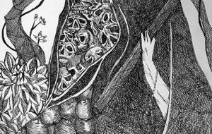 ムスティエ王国の死神 - フェサギ