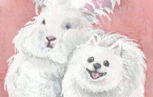 アンゴラウサギとポメラニアン - Mika Neichi