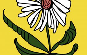 夏の花 - 五月ツツジ