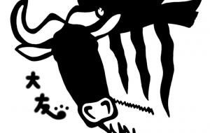 シロヒゲオグロヌー - シマハイエナ