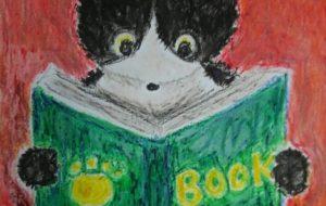 本を読む猫 - かいこ