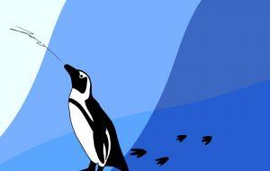 penguin - Foo