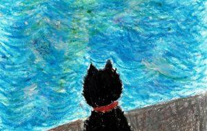 海を見る猫 - かいこ