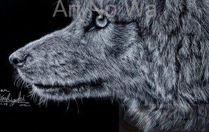 RINA_オオカミ - 可能性アートプロジェクト 2020