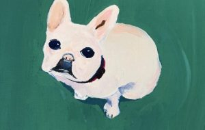 Yugo_Our French bulldog - 可能性アートプロジェクト 2020