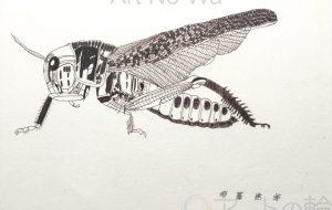 TATSUO_バッタ - 【イベント】可能性アートプロジェクト 2020