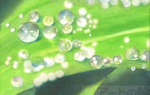 おゆみ_露の玉 - 可能性アートプロジェクト 2020