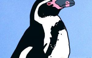 フンボルトペンギン - YU