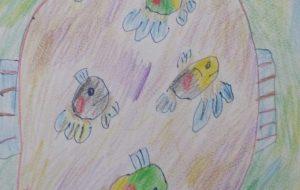 魚色鉛筆画 - マサミ