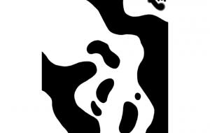 ボールニシキヘビ(模様) - シマハイエナ
