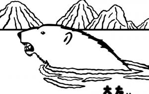 ホッキョクグマ - シマハイエナ