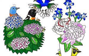初夏の花で鳥たちがかくれんぼ - SAYAKA