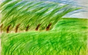 晴嵐の大地 - 上沼千騎