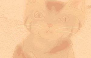 猫2 - 新型コロナウイルスと闘うみんなを応援しよう!