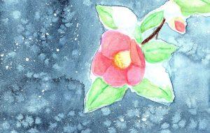 雪椿 - マカロニ