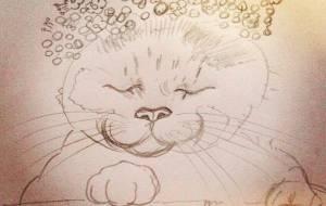 のせ猫 - 塙 真紀