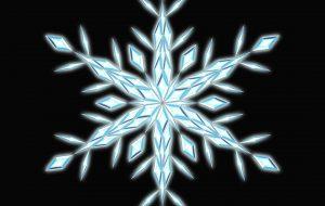 雪の結晶 - 亘全