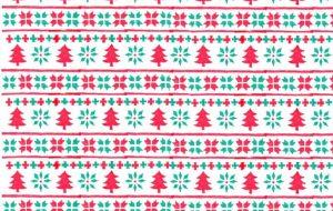 クリスマス - 虎目梨那