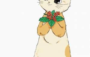 カランコエの猫 - はちわれ