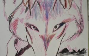 狼さん、こんにちは。 - ワタリドリ